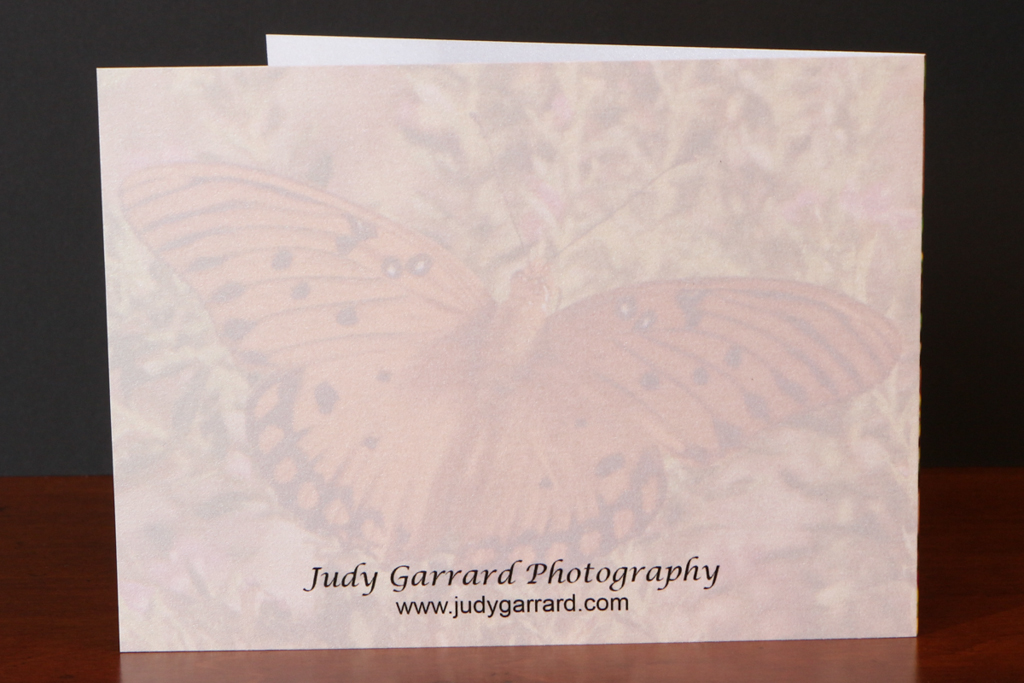 Back of Monarch Butterfly Note Card