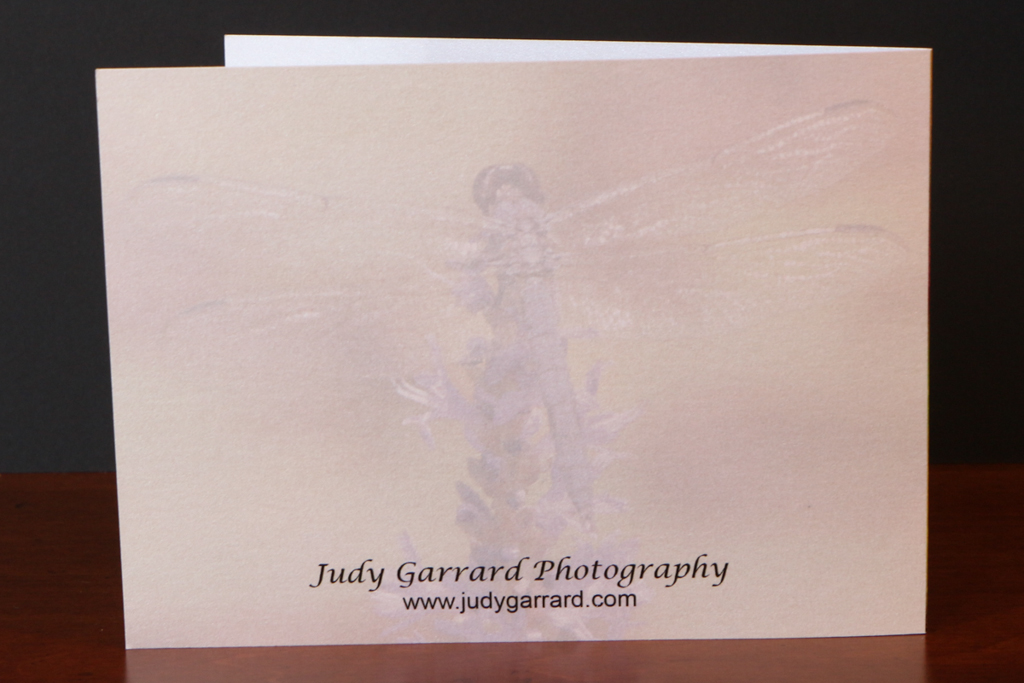 Back of Dragonfly Note Card