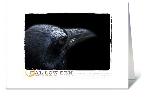 Photograph of Halloween Black Raven