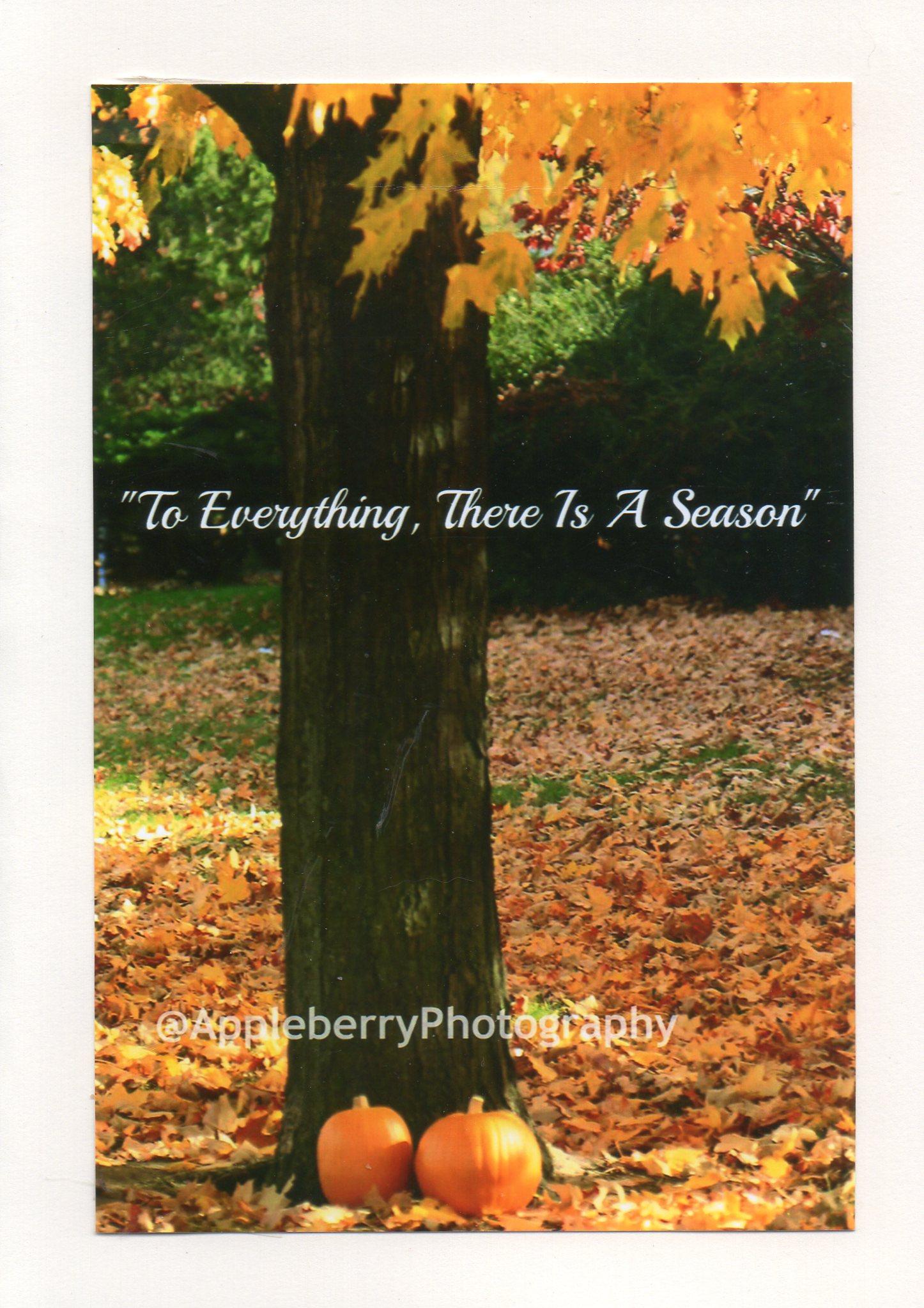 Inspirational - To Every Season