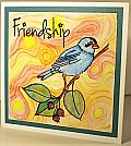 Friendship Canary